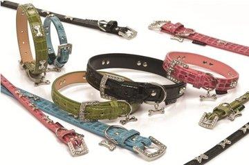 Halsbanden, lijnen & hondentuigen