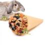 Snacks-knaagdier-&-konijn