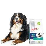 Prins Procare Croque Diet Gastro-Intestinal Zalm - Hondenvoer - 3 kg