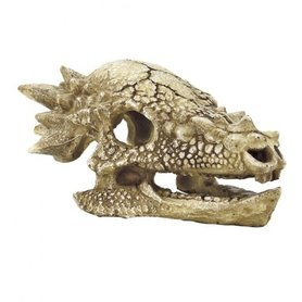 SuperFish Skull T-Rex M (15x11x8cm)