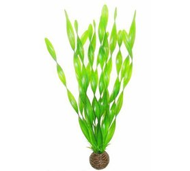 SuperFish Easy Plant Hoog 30cm Nr 6