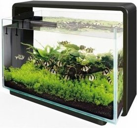 SuperFish Home 60L Aquarium Zwart (58,5x32x42,5cm)