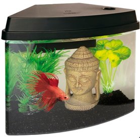 SuperFish Cascade 4 Aquarium Zwart
