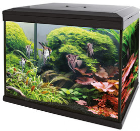SuperFish Aquarium Expert 30 Zwart