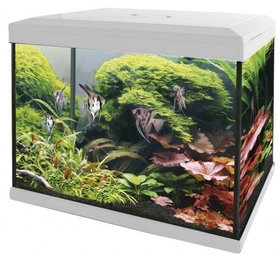 SuperFish Aquarium Expert 30 Wit