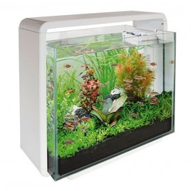 SuperFish Home 40 Wit Aquarium