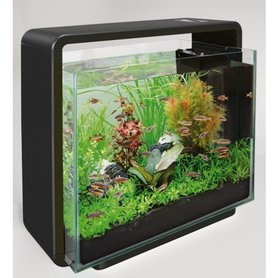 SuperFish Home 40 Zwart Aquarium