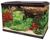 SuperFish Expert 70 Zwart Aquarium