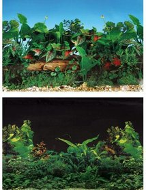 SuperFish Deco Poster NR 3 (120x49cm)