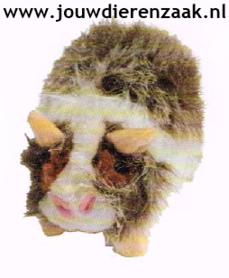 Hondenspeelgoed Pluche Cavia met Piep 17 Cm