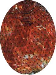 Zakje Cats Eyes Rood/Oranje á 250 Gram