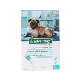 Advantage Hond 100 4 Pipetten