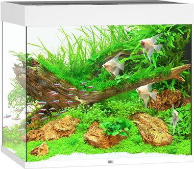 Juwel Aquarium Lido LED 200 Wit 70x51x65 cm