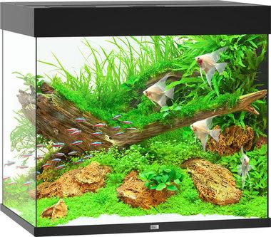 Juwel Aquarium Lido LED 200 Zwart 70x51x65 cm