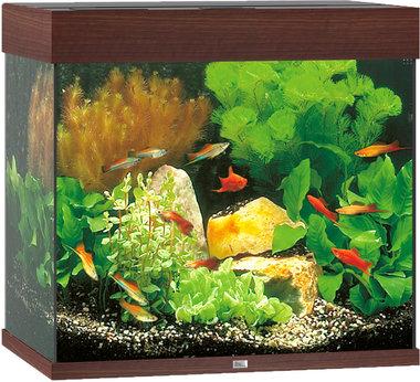 Juwel Aquarium Lido LED 120 Donkerbruin 61x41x58 cm