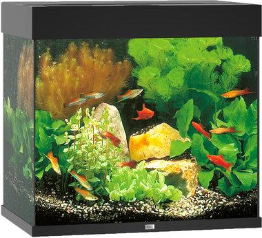 Juwel Aquarium Lido LED 120 Zwart 61x41x58 cm