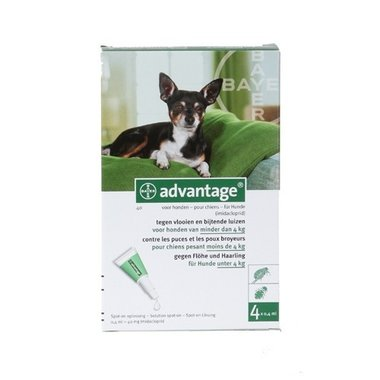 Advantage Hond 40 4 Pipetten