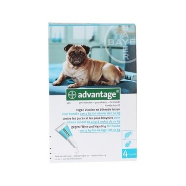 Advantage Hond 100 4 Pipetten