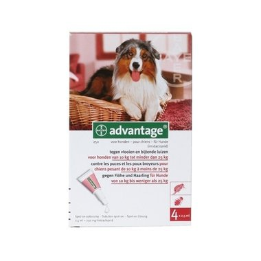 Advantage Hond 250 4 Pipetten