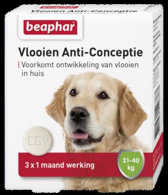 Beaphar Vlooien Anti-Conceptie Grote Hond (21-40kg)