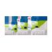 Juwel - Cirax Bioflow 6.0 Standaard H