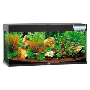 Juwel Aquarium Rio 240 121x41x50
