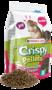 Versele-Laga Crispy Pellets Chinchillas & Degus 1 Kg