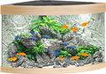 juwel trigon aquarium 190 LED licht eiken